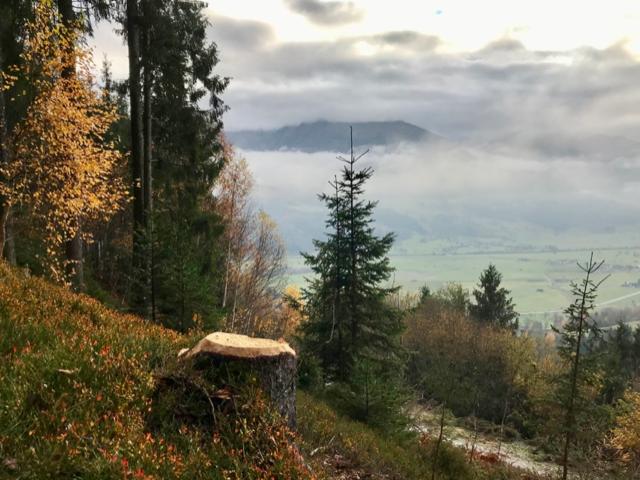 Zell-am-see-wandelen