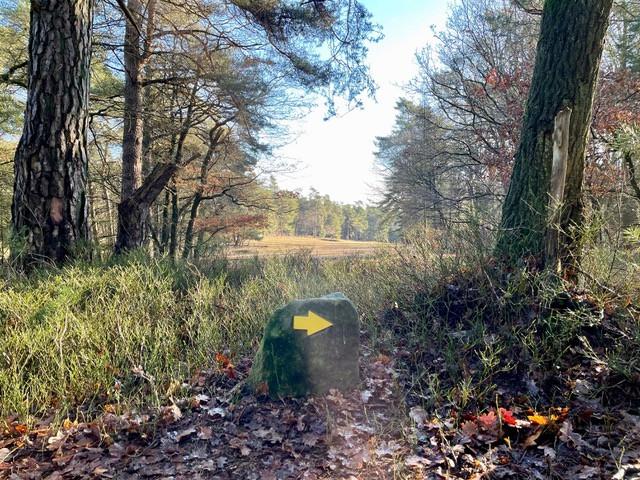 gele-zwerfkeien-wandelroute-loenen