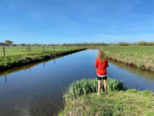 Klompenpad Stoutenburg: beken, bruggetjes en weiden