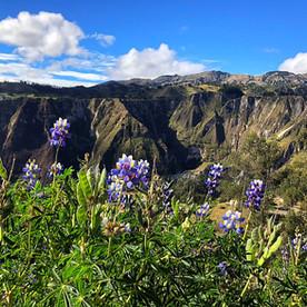 Ecuador, Quilotoa loop: een hike die ik nooit vergeet