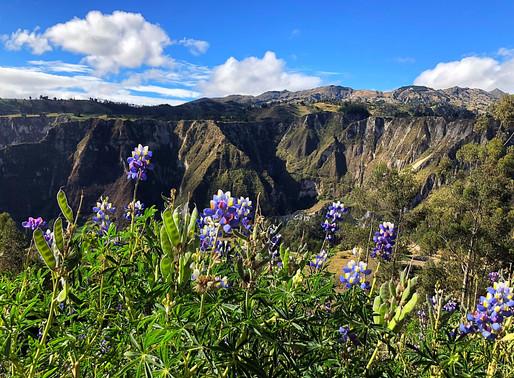 Ecuador: de Quilotoa loop is een hike die je nooit vergeet