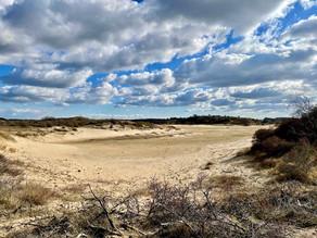 Blauwe palen wandelroute Parnassia: een pareltje in het Zuid-Kennemerland