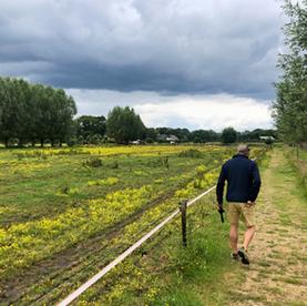 Glindhorsterpad nabij Barneveld: een klompenpad met verrassingen