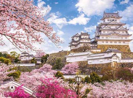 5 luoghi instragrammabili di Tokyo fuori dalle rotte (santuari e giardini)