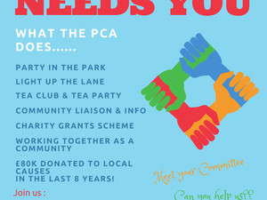 Your PCA needs you - 29 October 2018