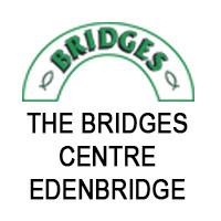 BRIDGES LOGO 1.jpg