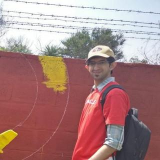 Painting walls!