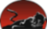 Багира-лого.png