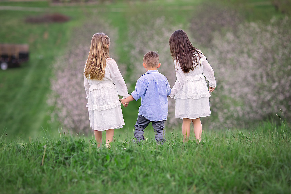 three children at the top of a hill overlooking a orchard in full springtime bloom