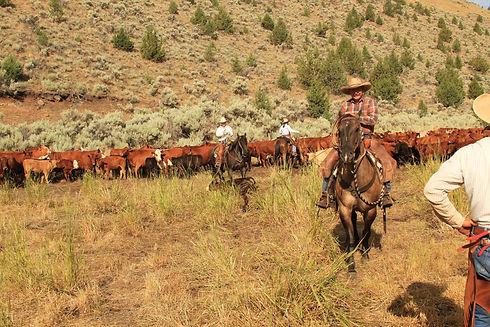 Oregon Dude Ranch Vacation Steens Mountain