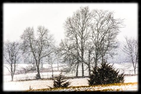 My Snow Photo.jpg