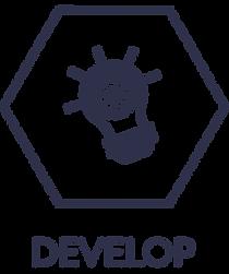Develop_keyline_text_blue.png