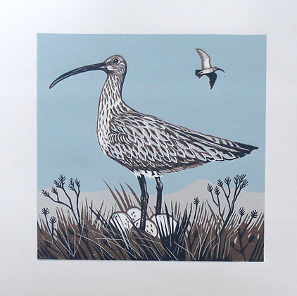 Curlew On Guard