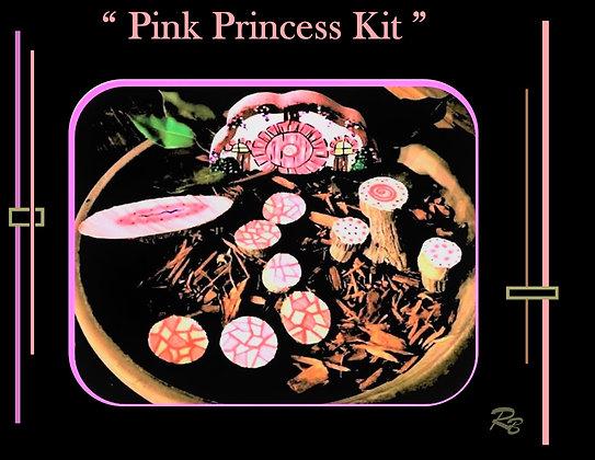 girl gift, fairy garden kit, child gift, kids garden, fairy gardens, fairy