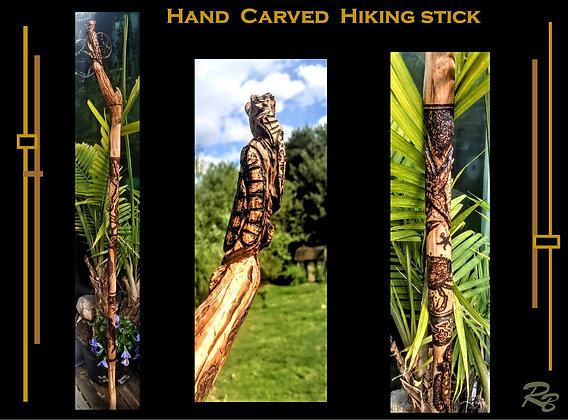 hiking stick, walking stick, carved hiking stick, turtle, octopus, custom