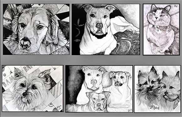 pet portraits. dog art, pets, fan art, jason mamoa, aquaman,portraits, artist