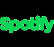 Spotify - Andrea Salicini Ballandi.png