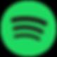 Spotify - Andrea Salicini Ballandi