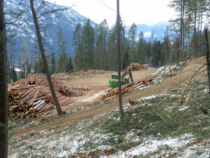 KNP Logging Nearing Completion