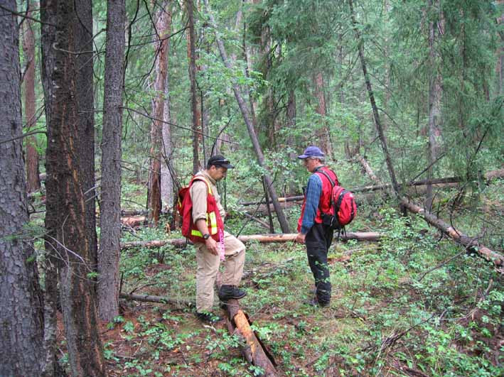 Bob Gray, fire ecologist and Ted Antifeau, Endangered Species Biologist examine the Williamson's Sapsucker Wildlife Management Area.