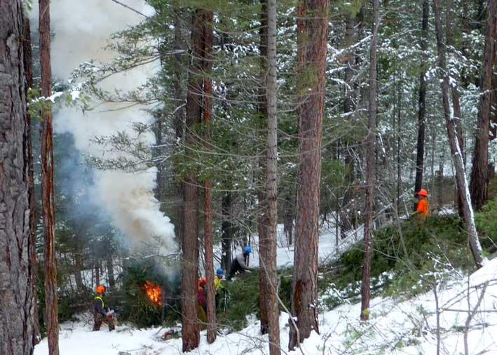 Crews slash, pile and burn small conifers and woody debris behind Romantic Ridge as part of the 2010-11 restoration program.