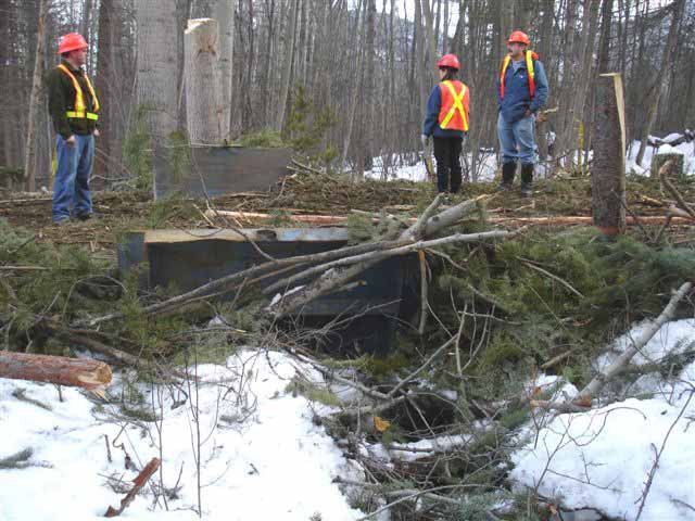 A temporary bridge was placed across the stream that runs down beside Jimmy Russell Road to allow equipment access to the logging unit to the west.  The bridge has since been removed and the skid trail reclaimed.