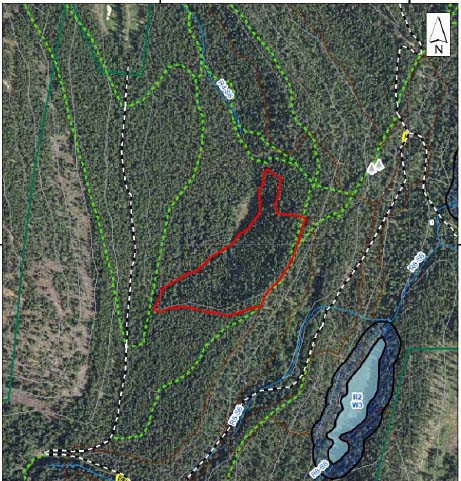 This treatment unit (3-3) is located on the steep hillside below and west of Romantic Ridge. West of the unit is Stump Trail and to the north is Hillside.