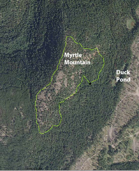 The top and southeast side of Myrtle Mountain will be thinned.