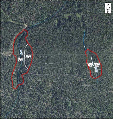 This treatment unit (3-11) is divided into two parts. Both of them lie on the steep hillside above the St. Mary's Lake Road. The western lobe is just below the Boulevard near its junction with the Army Road.