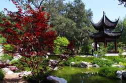 Huntington Library01.jpg