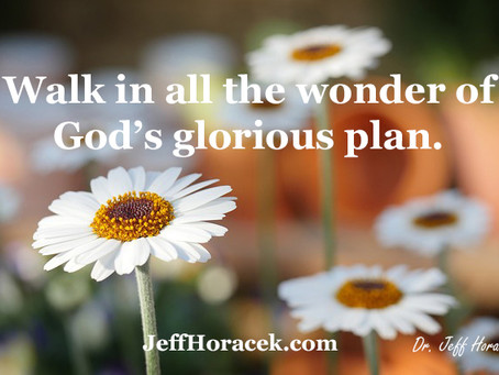 God's Glorious Plan