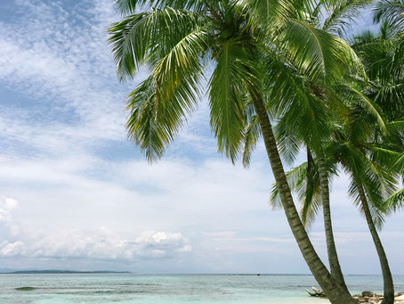 Tax Rules for Working Holiday Makers