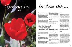 SpringMagazineLayout