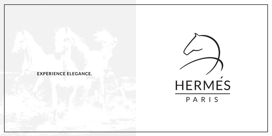 HERMES BRANDING GUIDE REDESIGN