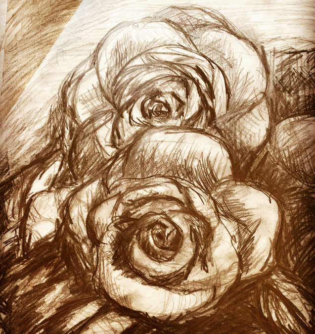 Roses (Charcoal, 2019)