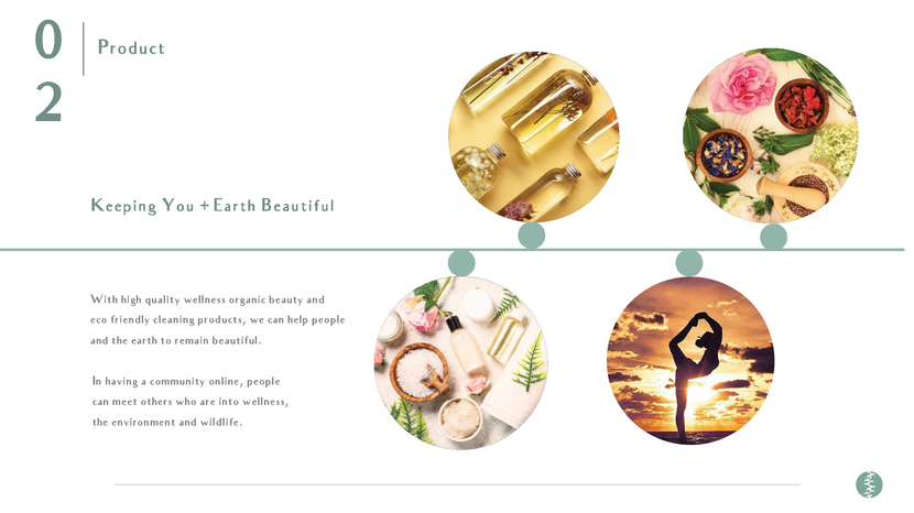 Healing Earth Executive Summary_Portfolio Smaller_Page_04.png