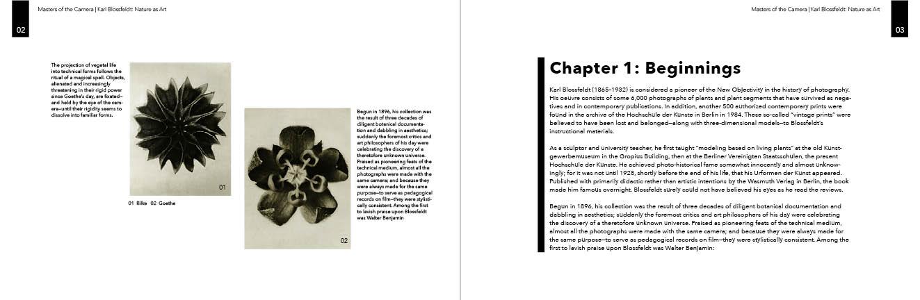 Book Final Design 3