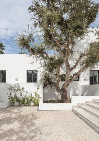 5 house among cork trees sotogrande spai