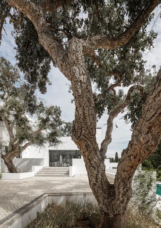 6 house among cork trees sotogrande spai