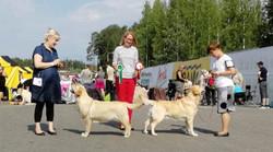kuopio2018-moxievsp.jpg