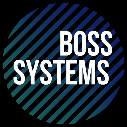 Boss Systems  Logo.png