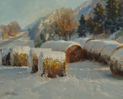 Snow Mantled Hay