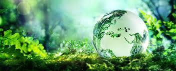 FOSSAS SÉPTICAS: UM SISTEMA QUE PODE SER MELHORADO COM O USO DE PLANTAS