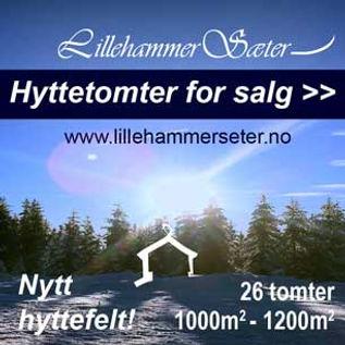 Hytte på Nordseter nær Sjusjøen