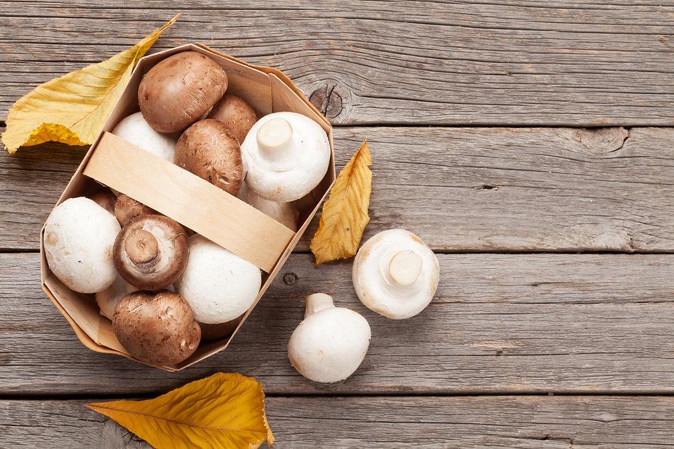 champignon-mushrooms-PFF48JK.jpg