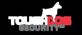 TD-Logo-Inverted-Color-Trans.png