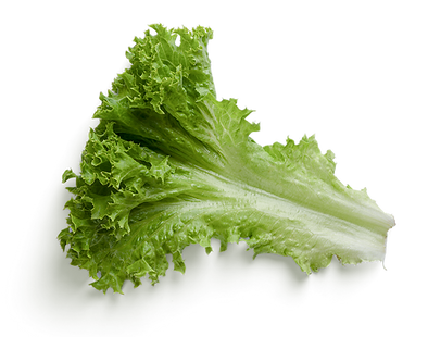 00-Veg-Salad.png