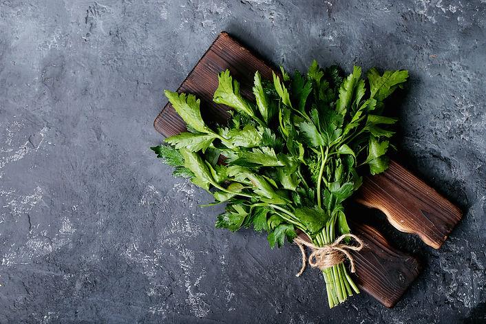 fresh-coriander-on-a-dark-texture-backgr