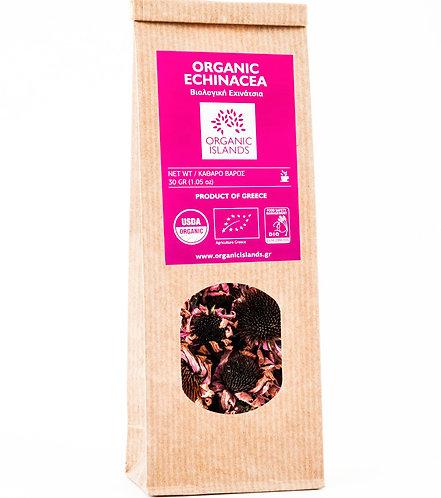 Echinacea (craft)