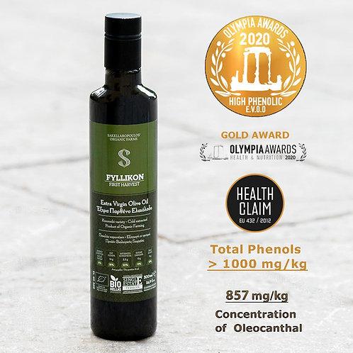 Fyllikon-glass bottle-500 ml